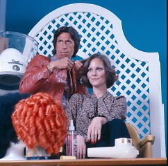 David Brenner and Lesley Ann Warren starred in the doomed NBC sitcom, Snip